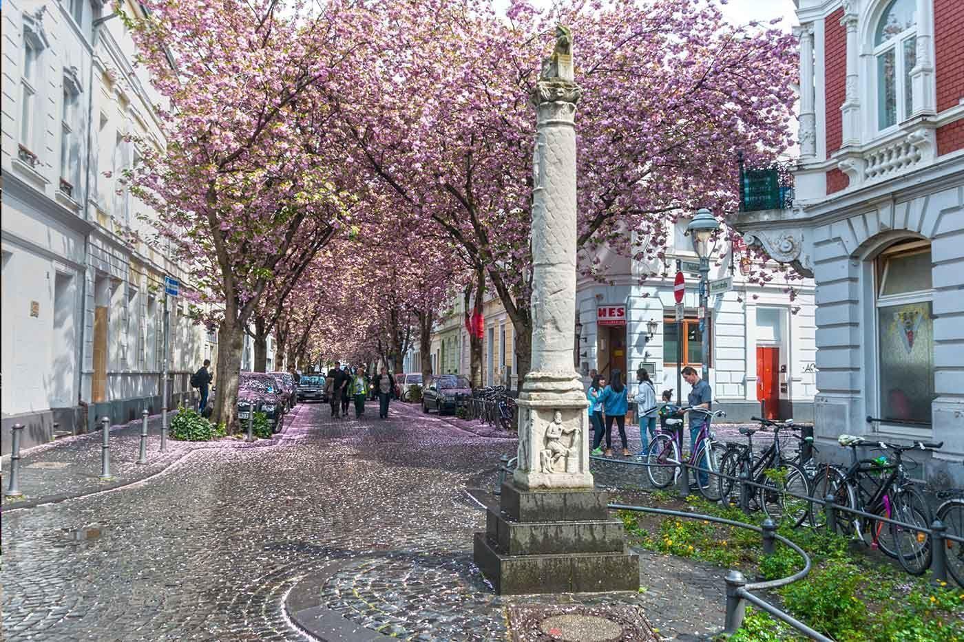 Bonn Alem
