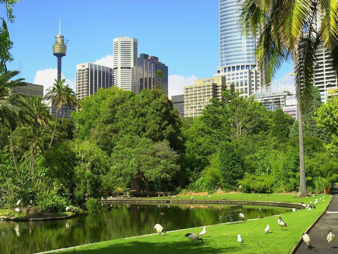 Australia Sydney viajar conocer estudiar Viajes y Viajes