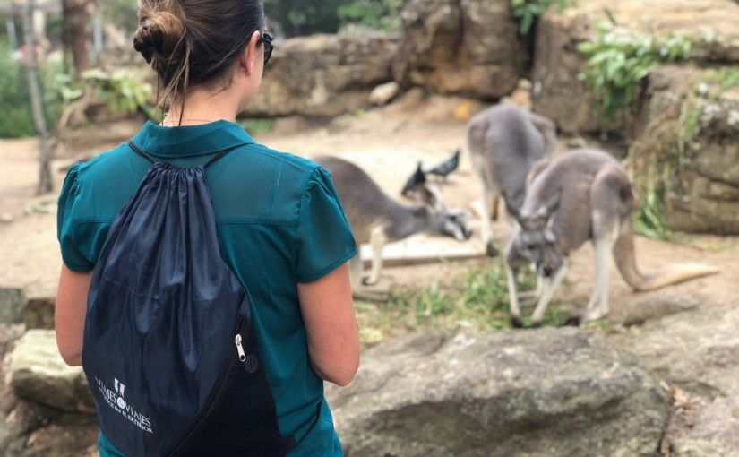 Si viajas a Australia, debes leer esto